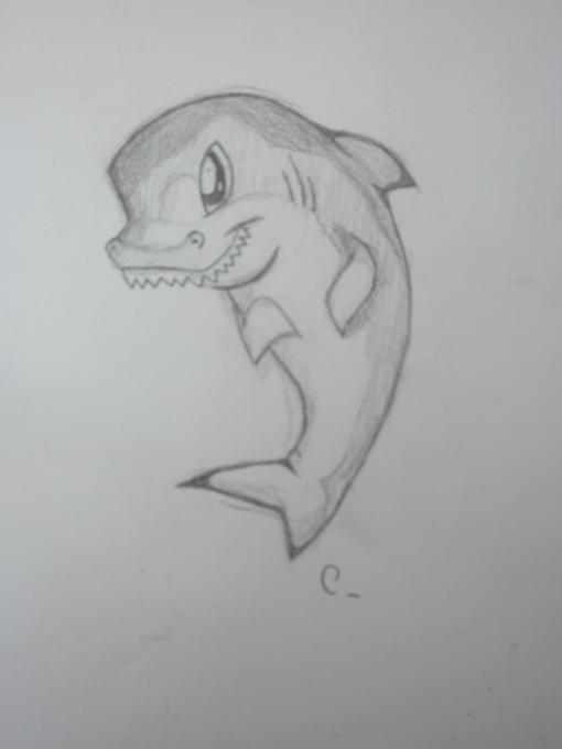 Little Shark Nature Drawings Pictures Drawings Ideas For
