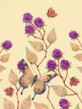 Blackberries, Butterflies and Ladybirds