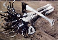 cuttlefish strain