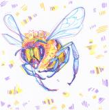 drawing of a bee