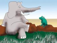 Elephant an frog