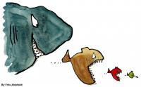 fish-over-fish