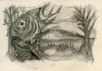 fish espines