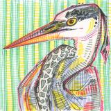 Heron drawing