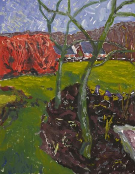 Fruit trees in Dutch landscape