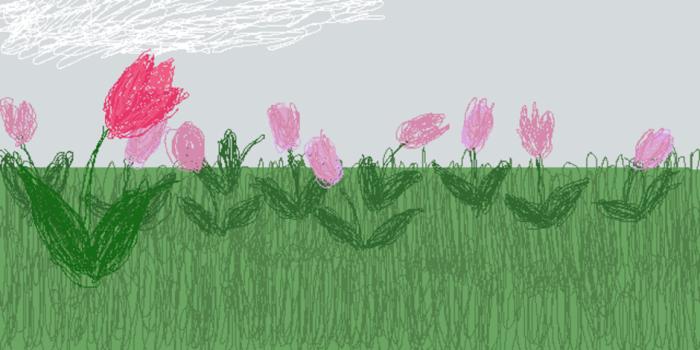 Tulips2.sketch