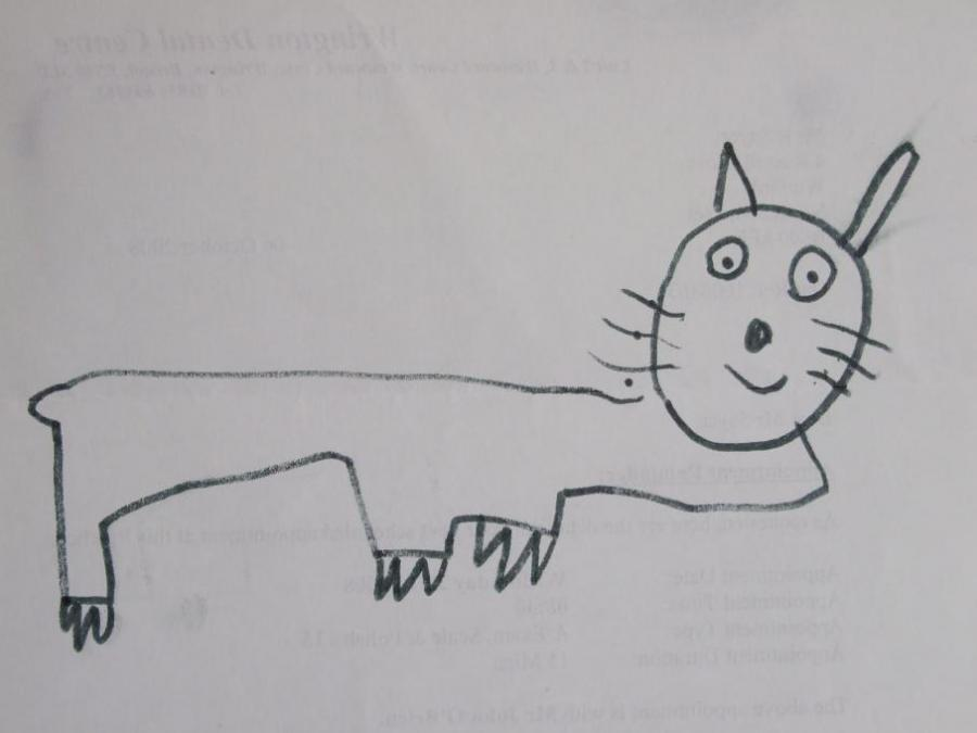 A Happy Pussy Cat Nature Drawings Pictures Drawings