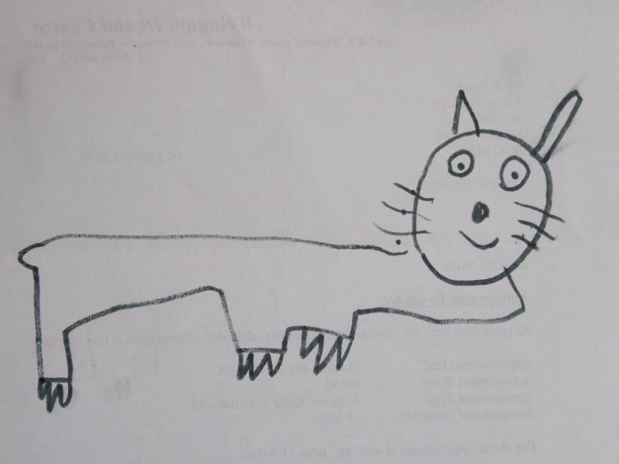 drawing of a pussy