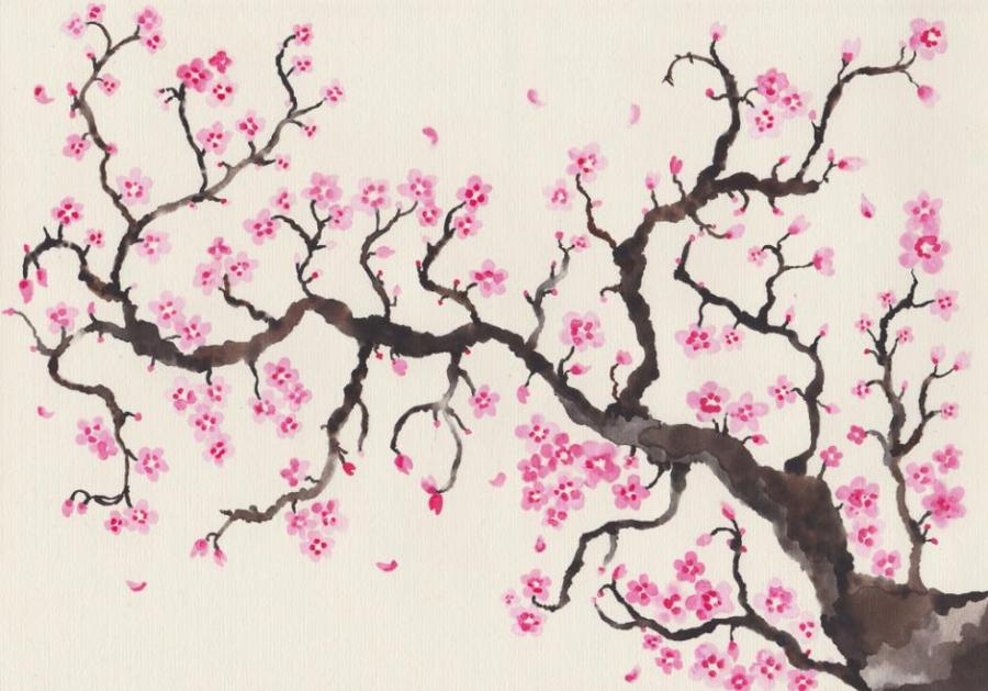 Cherry Blossom Nature Drawings Pictures Drawings Ideas For Kids Easy And Simple
