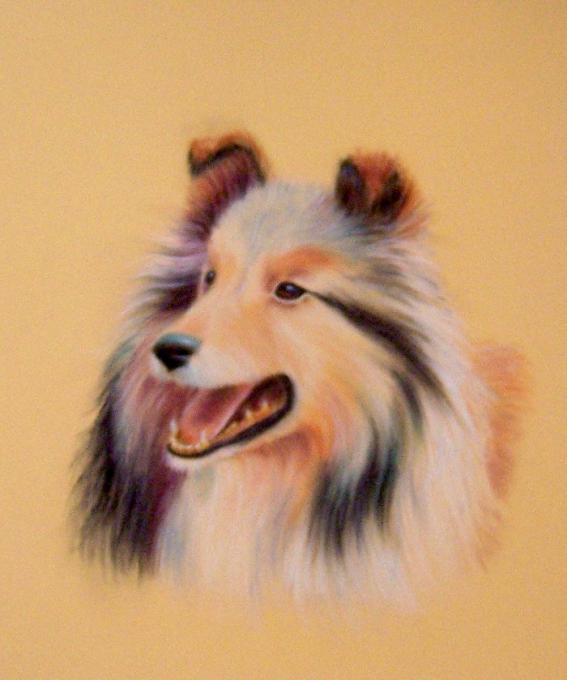 Collie Dog Nature Drawings Pictures Drawings Ideas For Kids