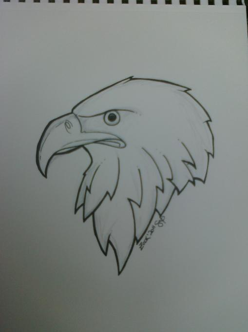eagle  nature  drawings  pictures  drawings ideas for kids
