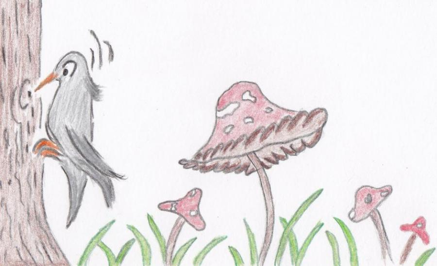 Elenas Drawings Nature Drawings Pictures Drawings Ideas For Kids