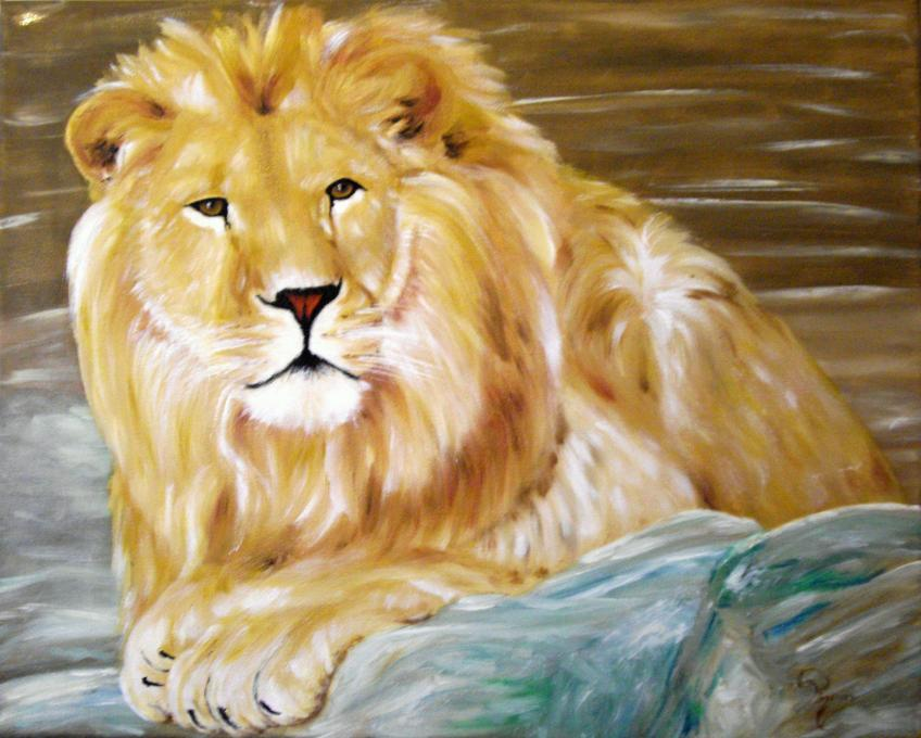 Lion Resting Animals Drawings Pictures Drawings Ideas For Kids