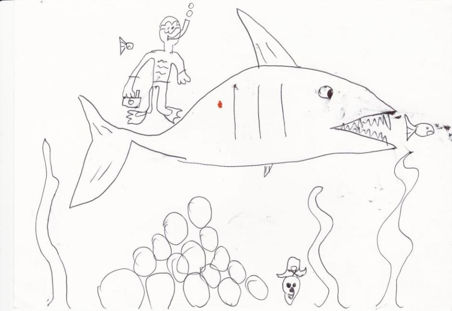 Shark And Diver Nature Drawings Pictures Drawings Ideas For Kids