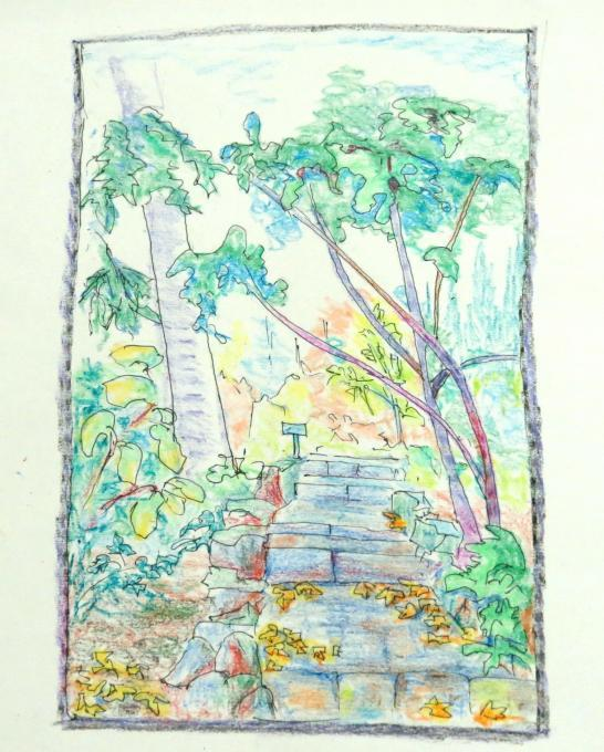 Steps in a Garden India Types drawings Drawings Pictures