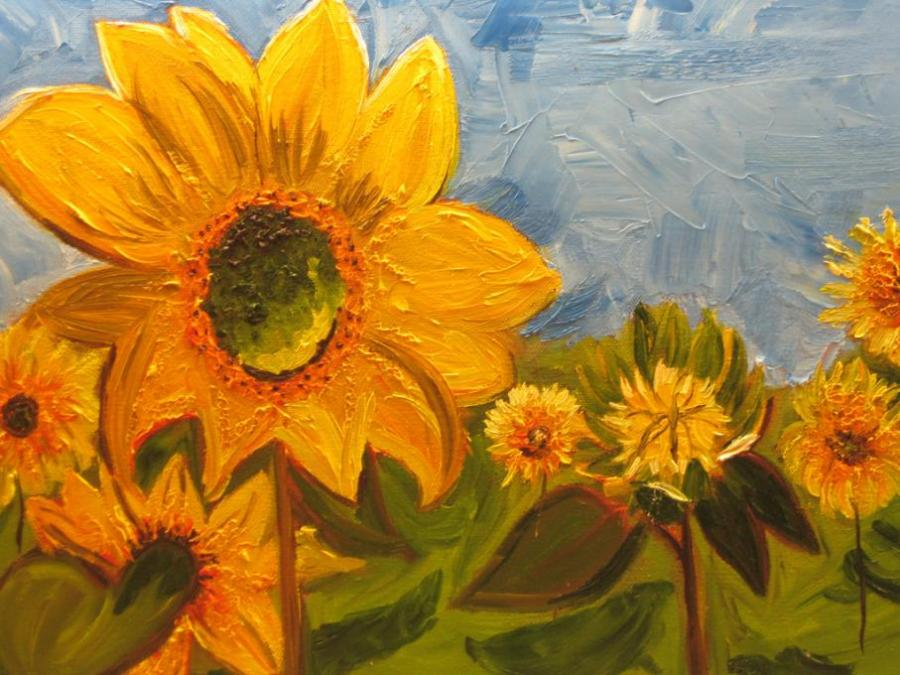 Sunflower Field Flowers Drawings Pictures Drawings Ideas For