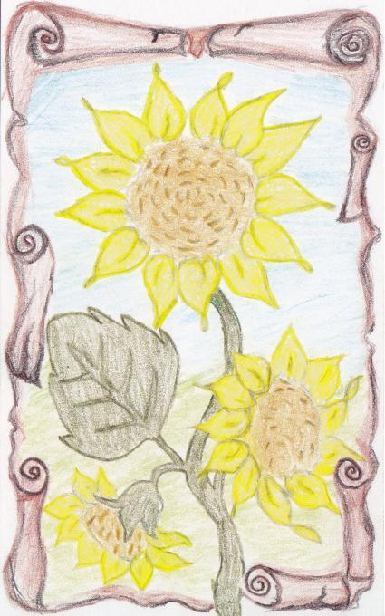 Sunflowers Flowers Drawings Pictures Drawings Ideas For Kids