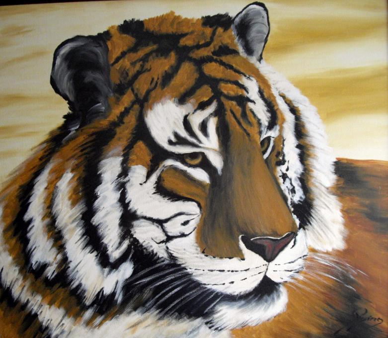 Tiger Animals Drawings Pictures Drawings Ideas For