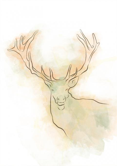 watercolour deer nature drawings pictures drawings ideas for kids easy and simple