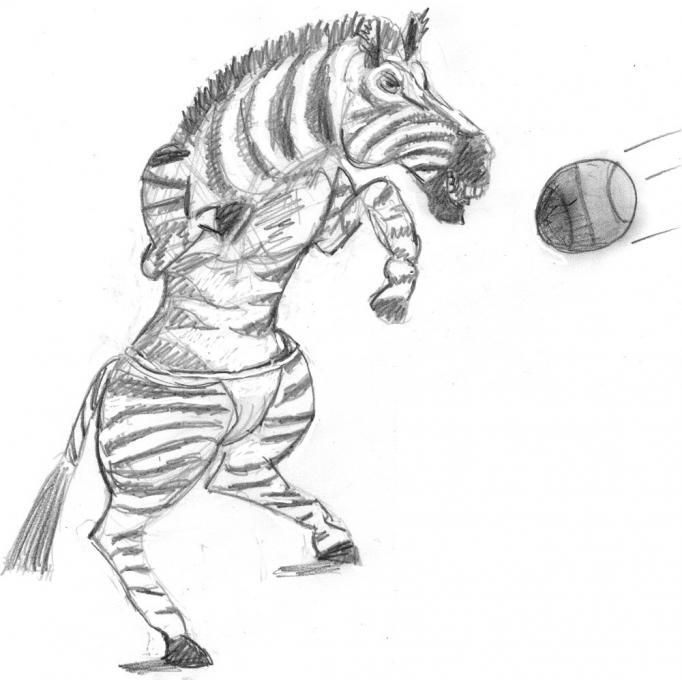 Zebra Beach Volleyball Nature Drawings Pictures Ideas