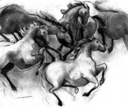 darkhorses