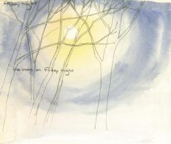 Friday Night Moon
