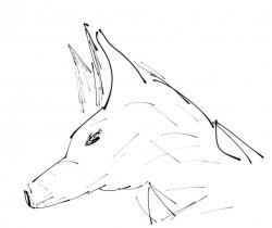 Wolf corgi