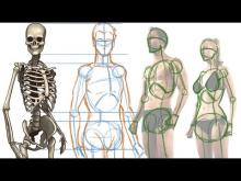 Embedded thumbnail for How to draw the Human Figure